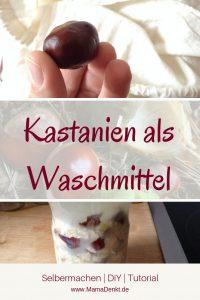 Kastanien als Waschmittel verwenden MamaDenkt