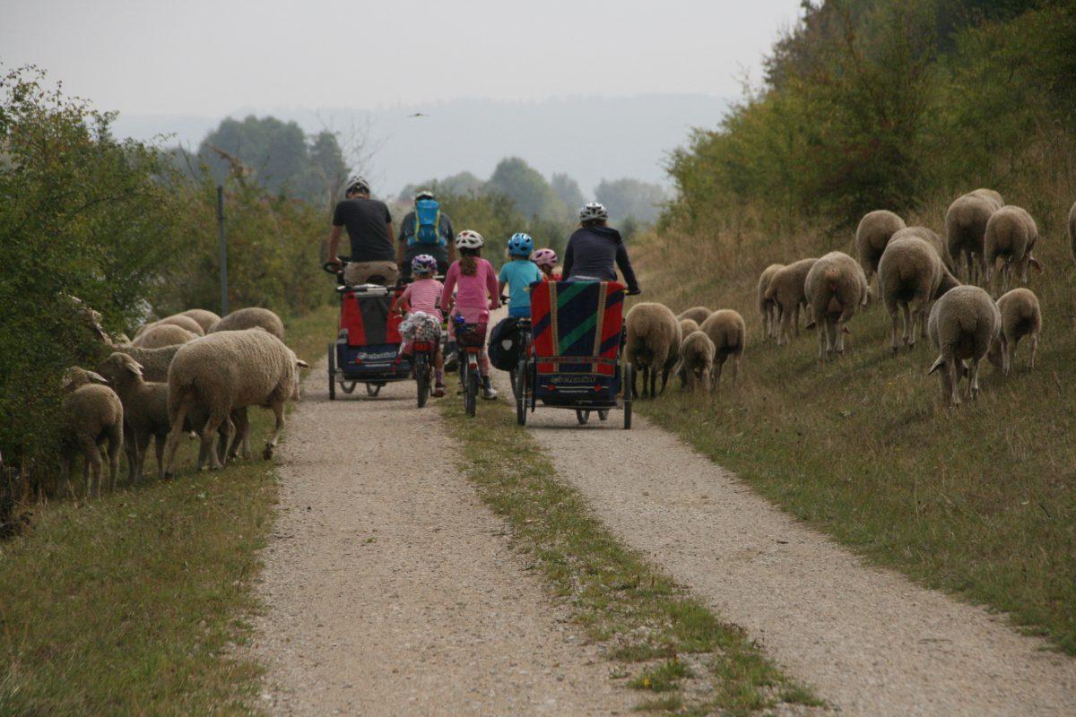Radreise als Familie entschleunigt